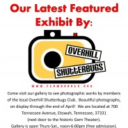 Current Exhibit – OVERHILL SHUTTERBUGS – Photography – On Display through end of April